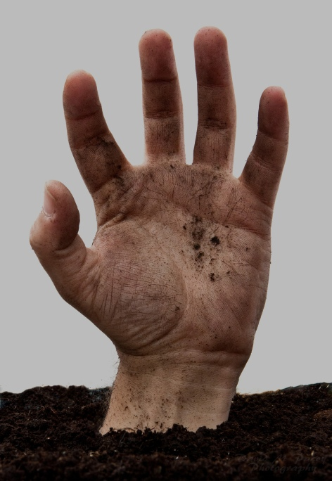 hand-1-by-david-pacey